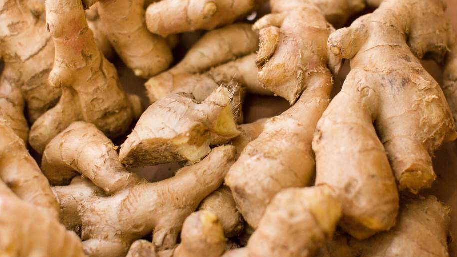 """Image result for ginger"""""""