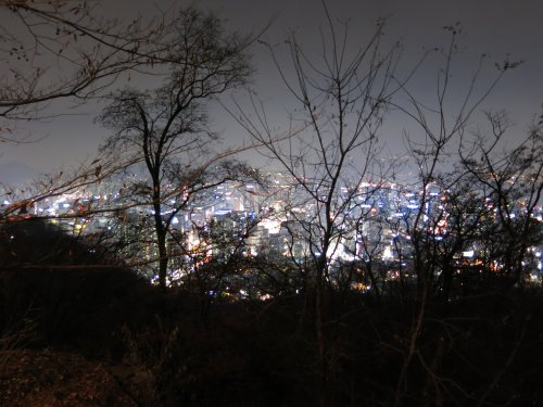 SeoulNamsamHillBlickAufDieStadt.jpg