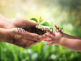 الجزائر تحتفل هذا السبت باليوم العالمي للبيئة بتنظيم نشاطات توعوية و اعلامية عبر الوطن