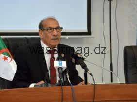 """فنيش : المجلس الدستوري سيضطلع بمسؤوليته """"التاريخية"""" للسهر على صحة الانتخابات"""