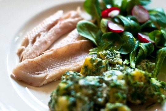 gestoomde forel, aardappelsalade en veldsla