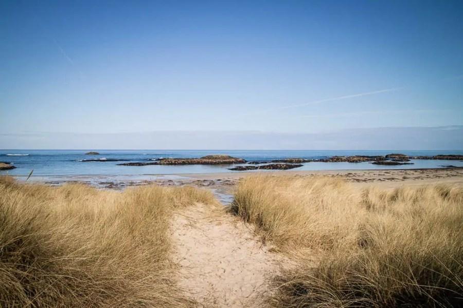 A sandy beach on Coll
