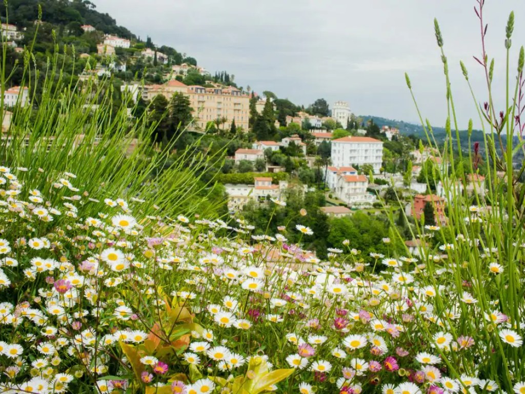 Grasse is the kind of place that makes you fall in love in a heartbeat. Not convinced? Well, maybe these ten photos of Grasse will do the job!