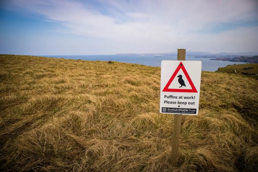 A sign for puffin nests on Handa Island.