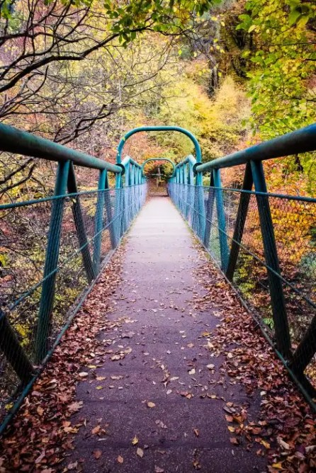 Green bridge in the autumn forest - Killiecrankie Pass in Perthshire, Scotland