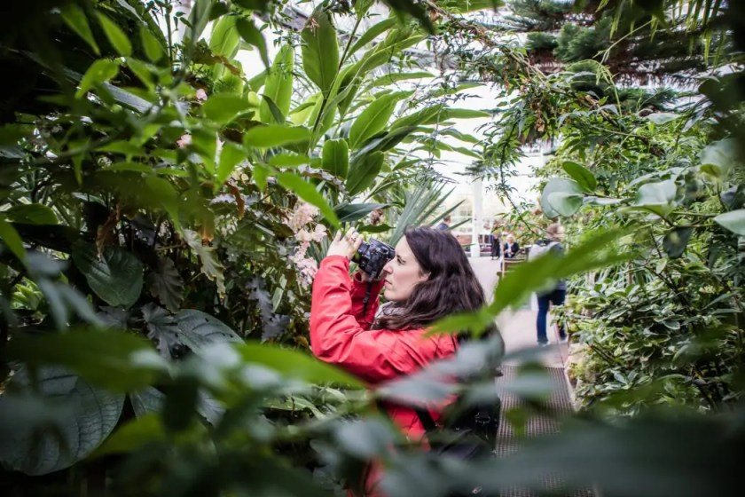 Photographing plants at the People's Palace in Glasgow.