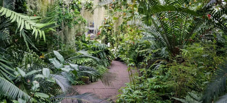The Royal Botanic Garden in Edinburgh.