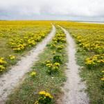 Walking the Hebridean Way in 12 days
