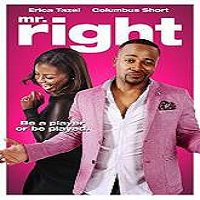 Mr. Right (2015) Full Movie Watch Online HD Print Quality Free Download