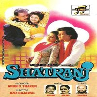 Shatranj (1993) Watch Full Movie Online HD Download