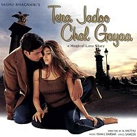 Tera Jadoo Chal Gayaa (2000) Full Movie Watch Online HD Print Free Download