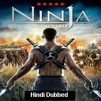 Ninja Immovable Heart (2014) Hindi Dubbed Full Movie Watch Online Free Download