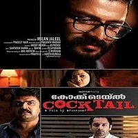 Payback (Cocktail 2020) Hindi Dubbed Full Movie Watch Online HD Free Download