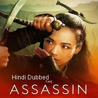 The Assassin (2015) Hindi Dubbed Full Movie Watch Online HD Print Free Download