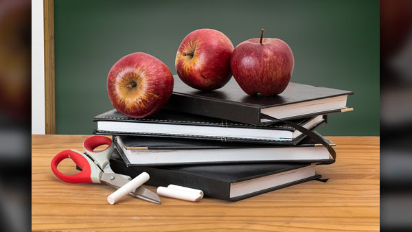 SCHOOL TEACHERS PRIMARY EDUCATION_generic_pixabay_photo_1542253542539.jpg.jpg