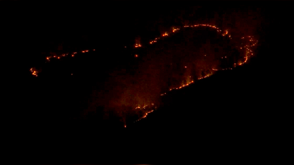 BREAKING_fire in Sevier County_news_1203_IMAGE FROM LIVESHOT_1543895049969.jpg.jpg