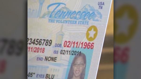 License Rules Amid Coronavirus Pandemic