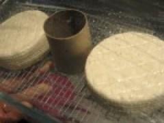 Camembert v3.0 rijpt er weer lustig op los