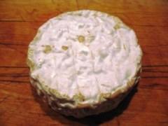 Camembert met gepasteurizeerde melk en fabrieksschimmel lukt ook gewoon