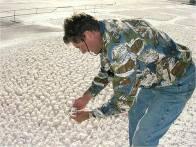 Glenn Gruett examines zeolite crystals.