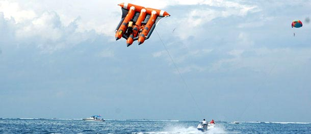 Bali Flying Fish