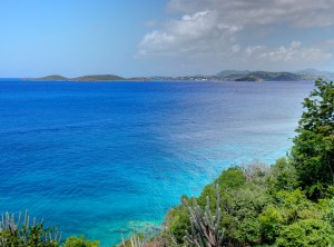 Vibrant Turquoise Sea