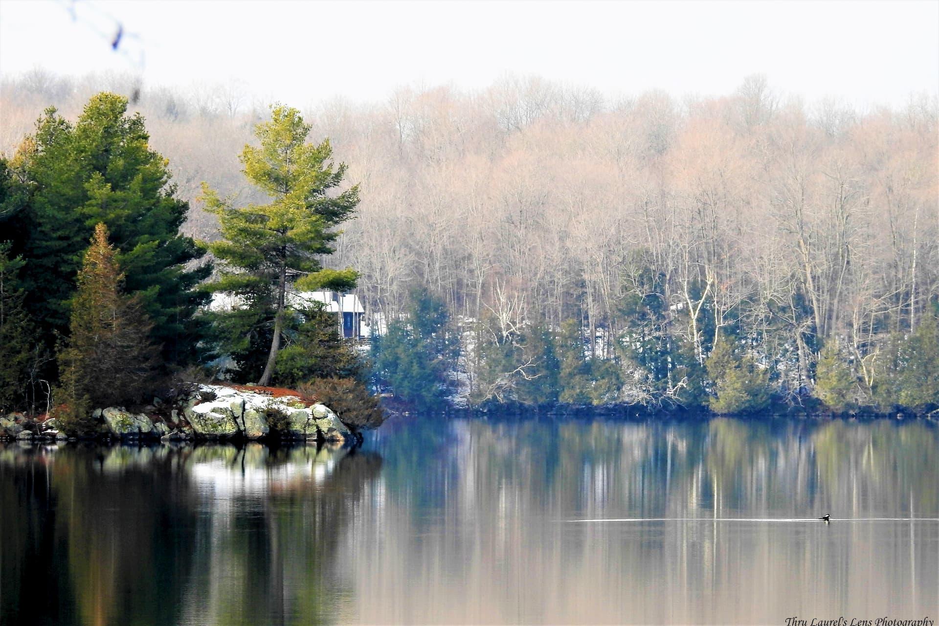 A lake side photo at Westport.