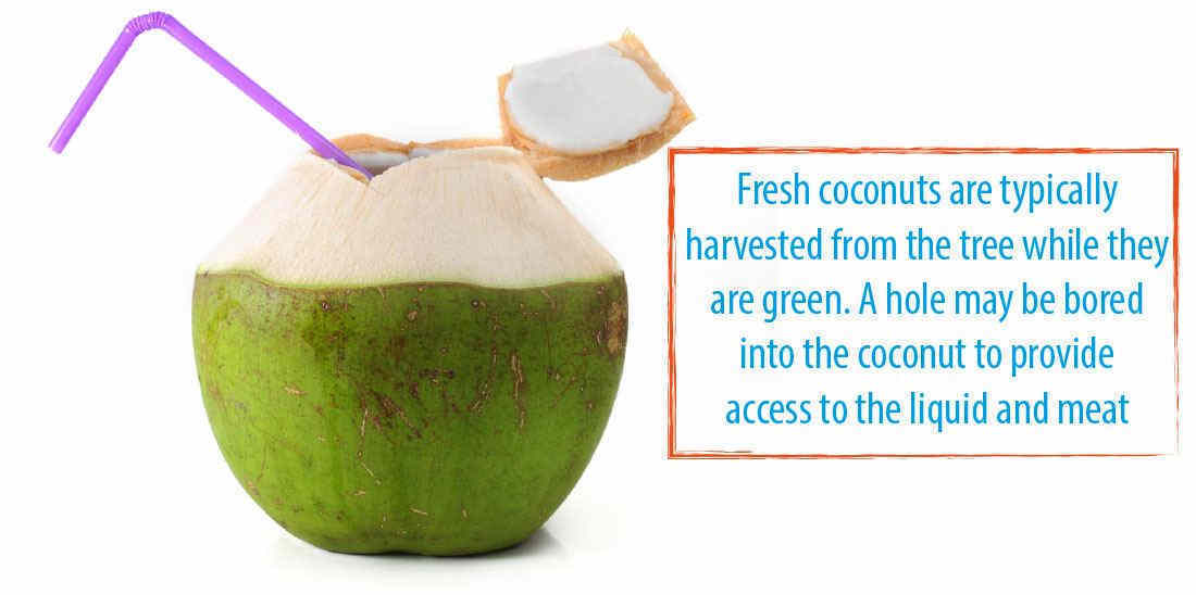 How To Make Coconut Water Taste Better A Useful Guide