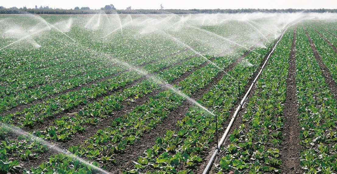 How does agriculture affect the water cycle