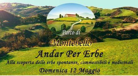 Andar per erbe al Parco di Montebello (RE) il 12 maggio