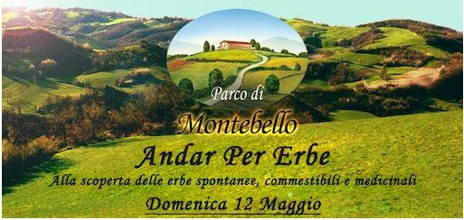 Parco Montebello