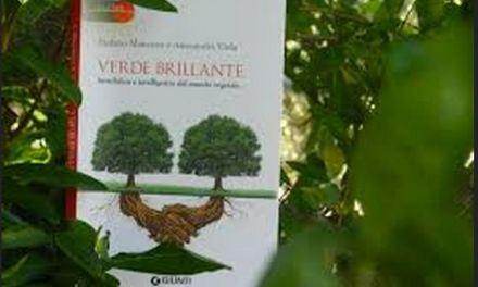 """Se le piante potessero parlare. Intervista con Alessandra Viola, autrice di """" Verde brillante"""""""
