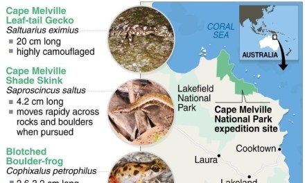 The Lost World: Cape Melville