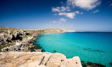 La tutela dell'ecosistema marino delle Egadi, Palermo 2 dicembre