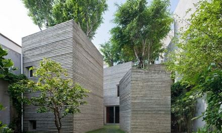 House For Trees: Tetti Verdi per Combattere l'Eccessiva Urbanizzazione Vietnamita