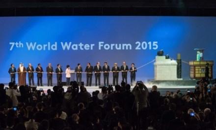 Meno privatizzazioni e più governance pubblica: è l'auspicio del 7° Forum mondiale dell'acqua 2015