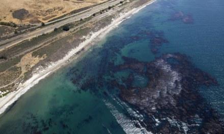 Tragedia ambientale a Santa Barbara (California): 80.000 litri di greggio nell'oceano