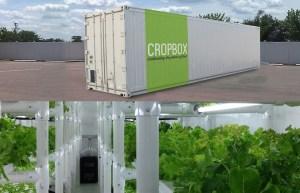 cropbox_interno_esterno