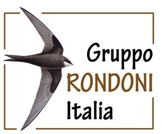 Il Festival dei rondoni 2015 ( con aperitivo) a Parma, dal 26 al 28 giugno