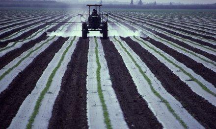 L'agricoltua è in Europa il più importante fattore singolo di inquinamento dell'aria
