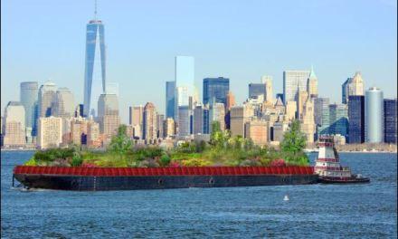 Swale, la foresta galleggiante di New York