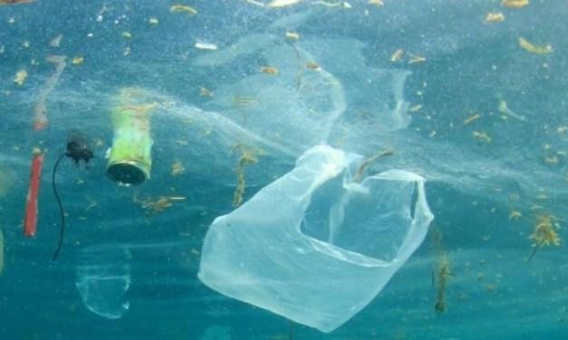 La plastica sta soffocando il mare. Il progetto di Cleanup propone una soluzione utilizzando le correnti.