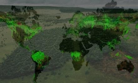 IL CONSUMISMO AUMENTA LA DEFORESTAZIONE GLOBALE