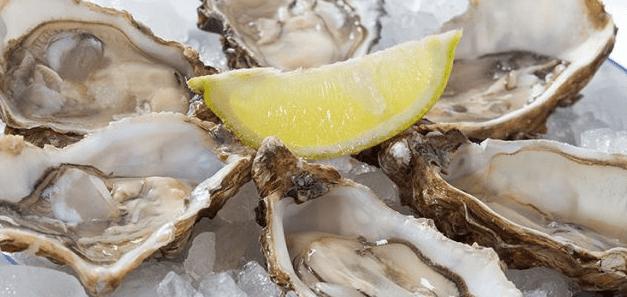Gli allevamenti di ostriche salvano le coste