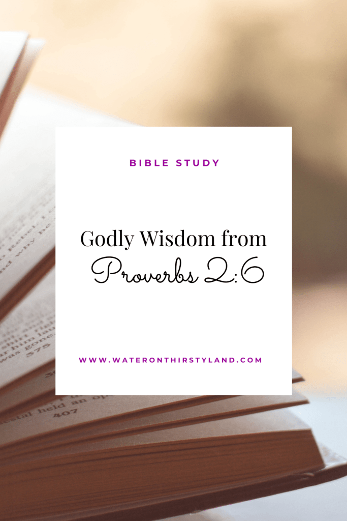 Godly wisdom from Proverbs 2_6