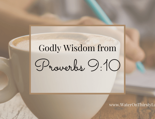 Godly Wisdom from Proverbs 9_10