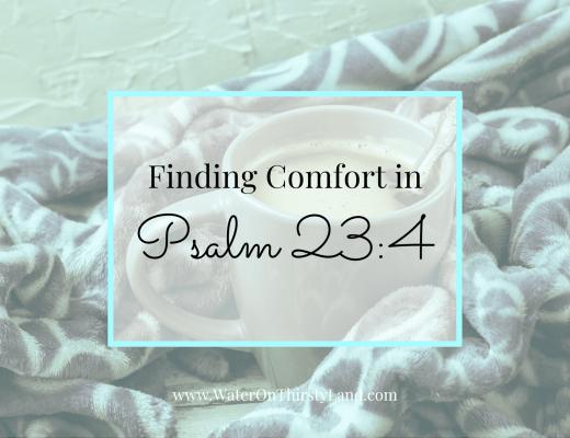 Comfort in Psalm 23:4