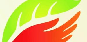 Logo Travelife image