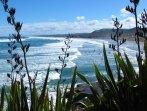 Muriwai-Beach4