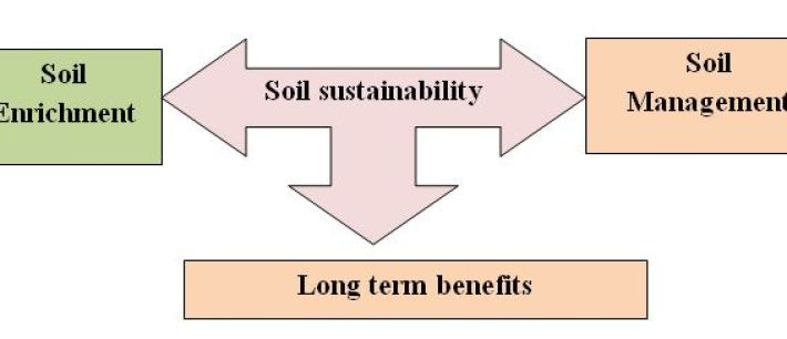 Discuss about soil.